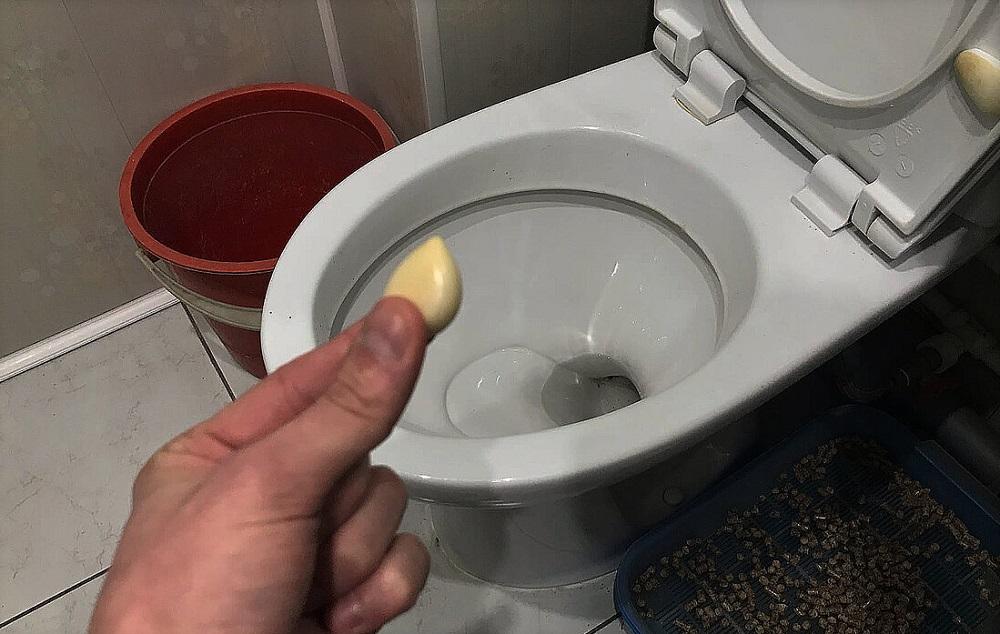 очистить унитаз чесноком