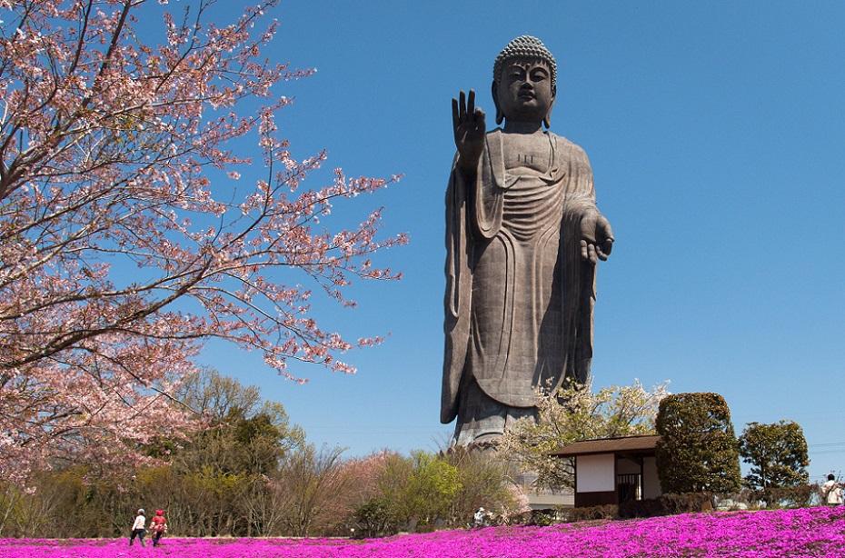 известные статуи статуя будды усику