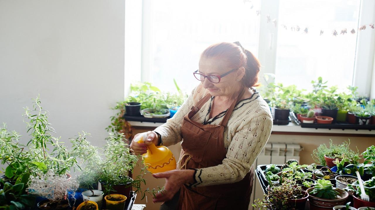 женщина опрыскивает вазоны