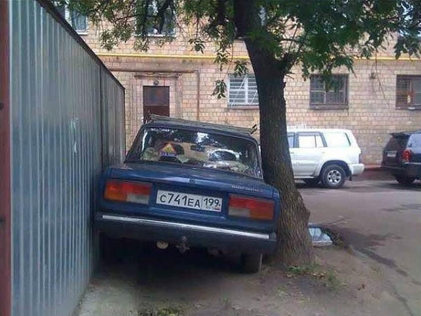 парковка машины между деревом и забором