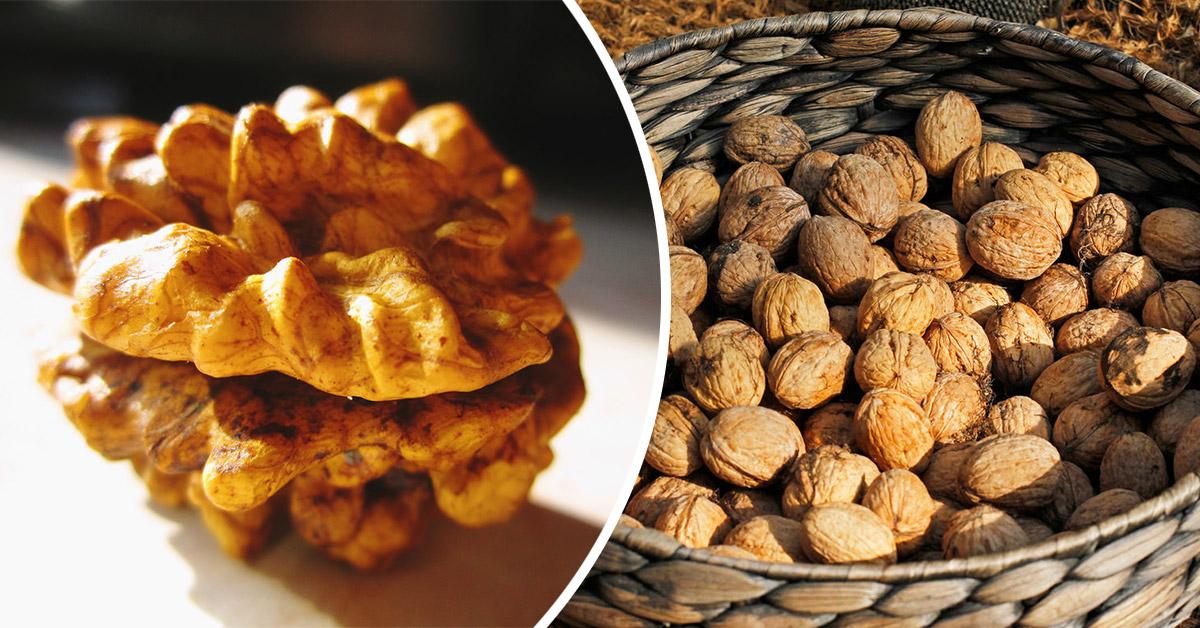как расколоть грецкие орехи