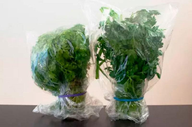 как хранить зелень в стакане с водой