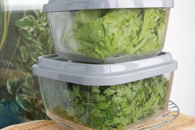хранение зелени в контекнерах