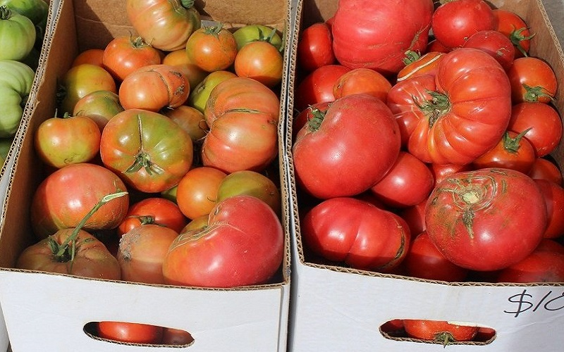 помидоры в картонной коробке