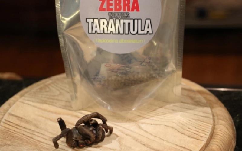 жареные тарантулы