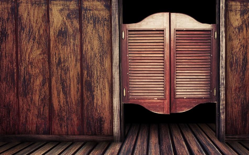 пендельтюр дверь