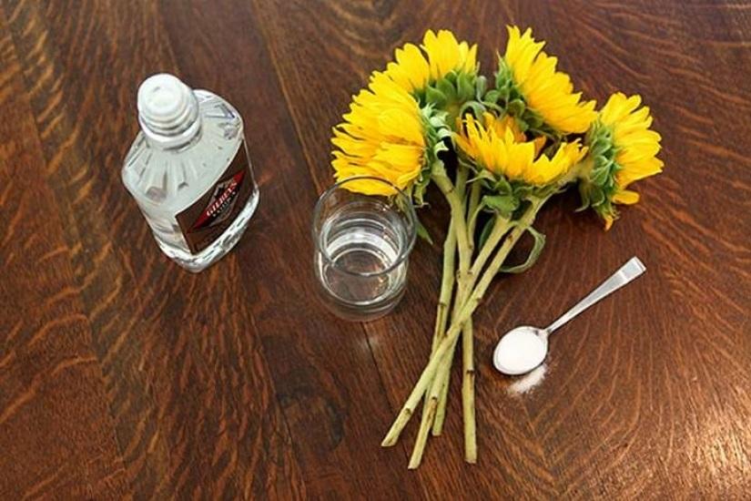 продлить жизнь цветов водкой