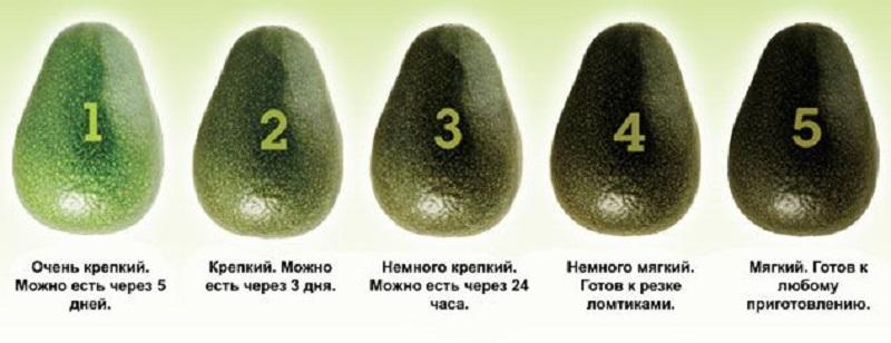 степень зрелости авокадо