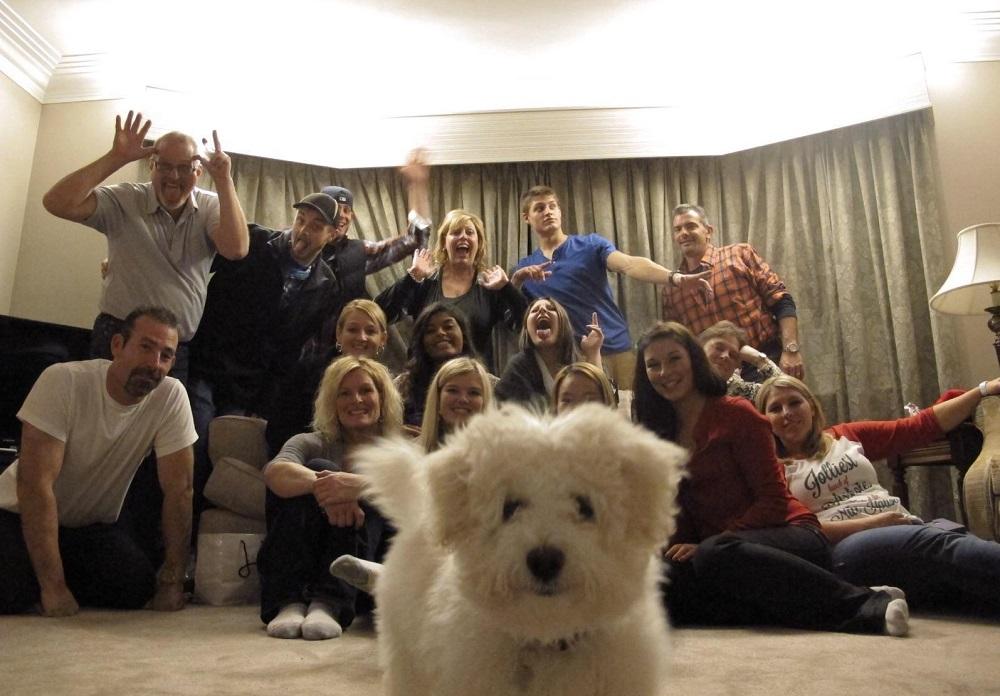 случайные фото собака влезла на групповое фото