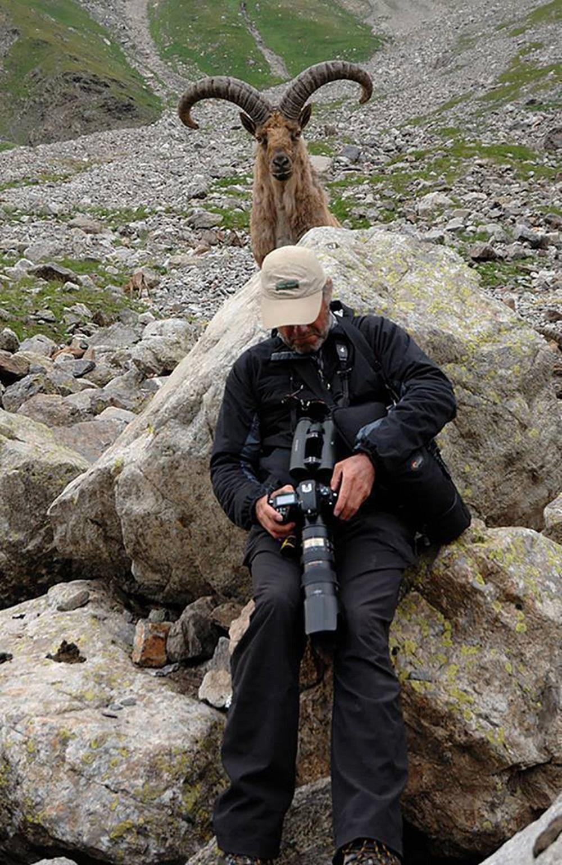 случайные фото олень за спиной фотографа