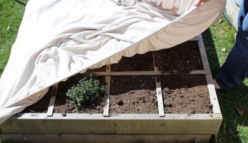 Одеяла для растений