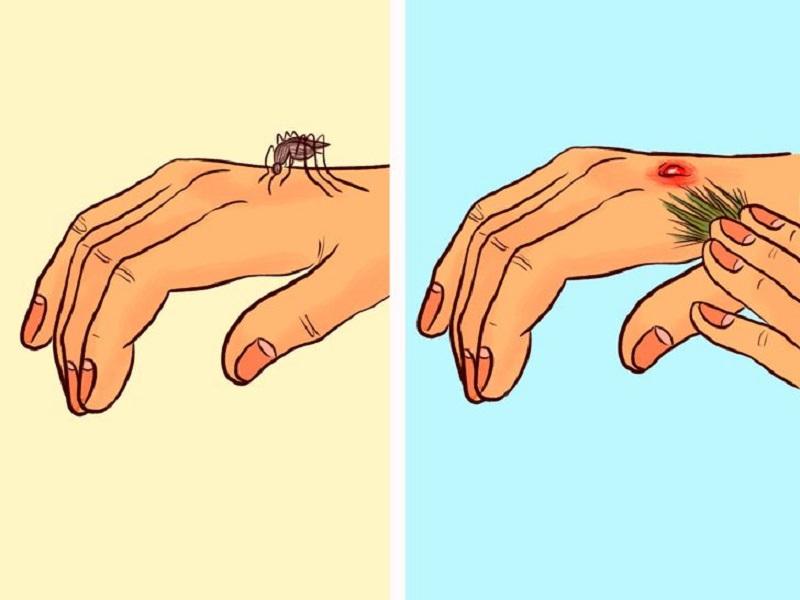 сосновый запах от комаров